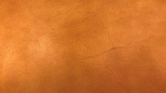 ヌメ革 血筋 (2)